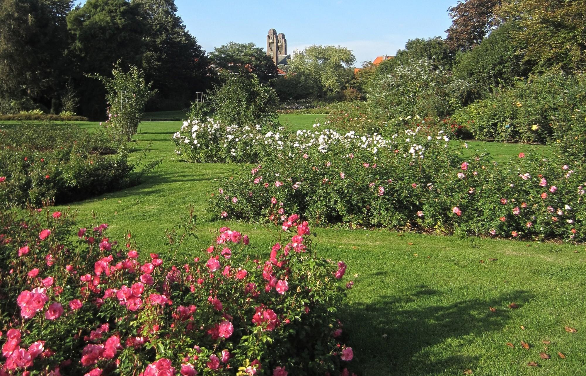 Excursie Beeldentuin van het Westbroekpark